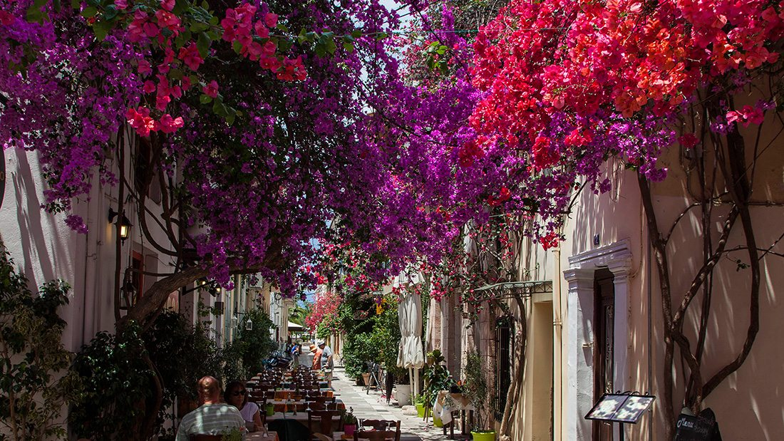 Nafplio | Dafni Guesthouse Nafplio - Dafni Guesthouse | Nafplio guest house
